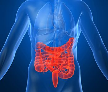 crohns_disease_affected_area