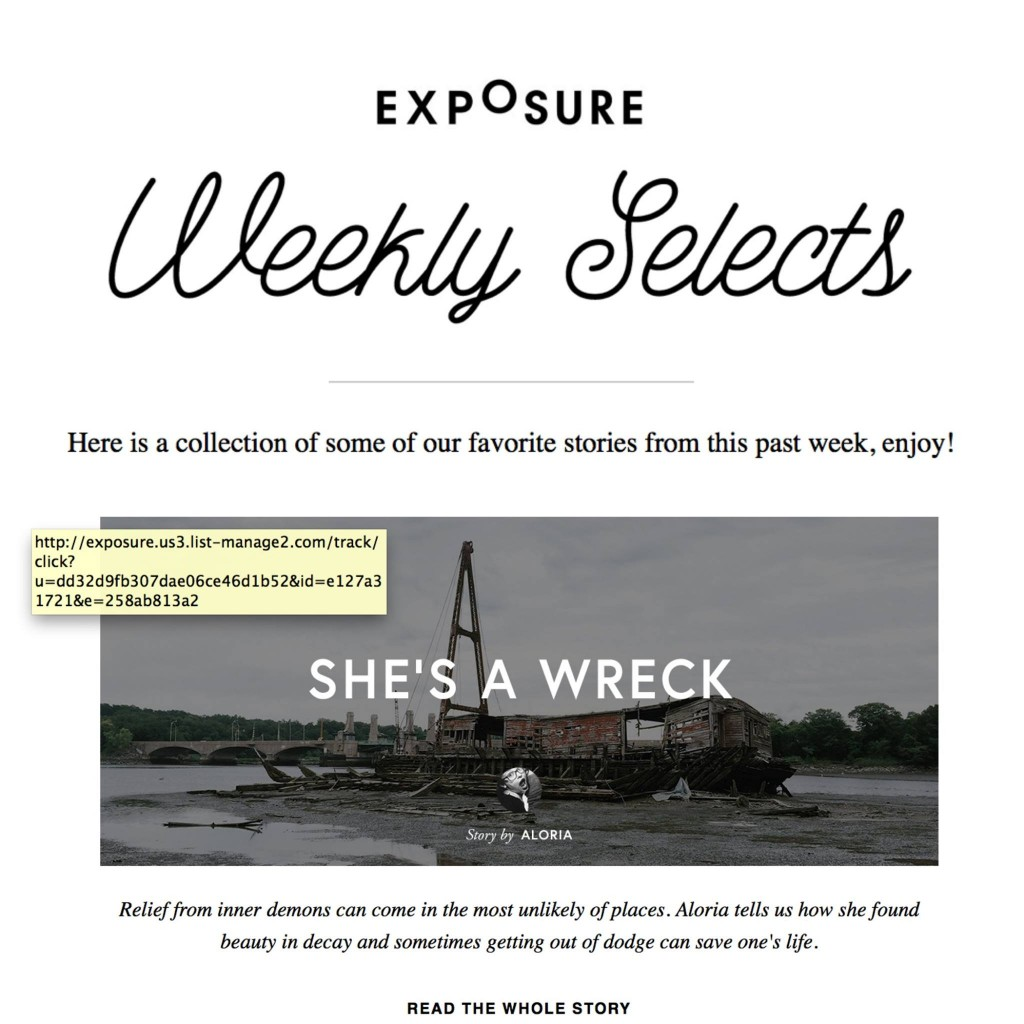She's A Wreck blog logo